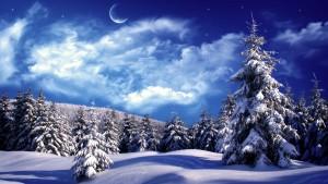 beautiful winter wallpaper moon on winter nights