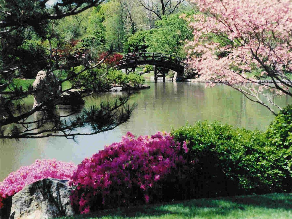 Spring Garden Wallpaper Spring In Japanese Garden