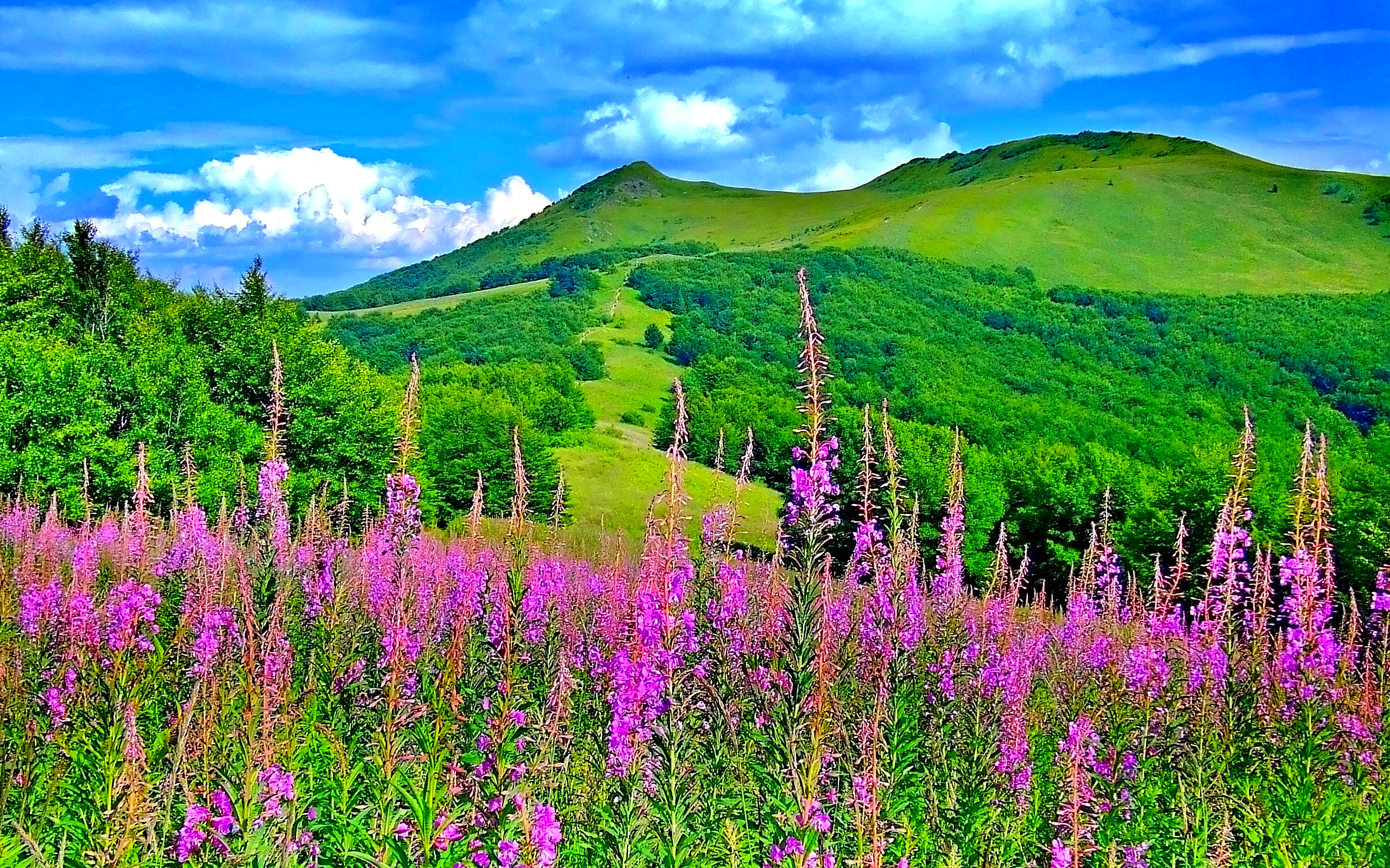 Spring Landscape Beautiful Mountain Landscape Truly Hand