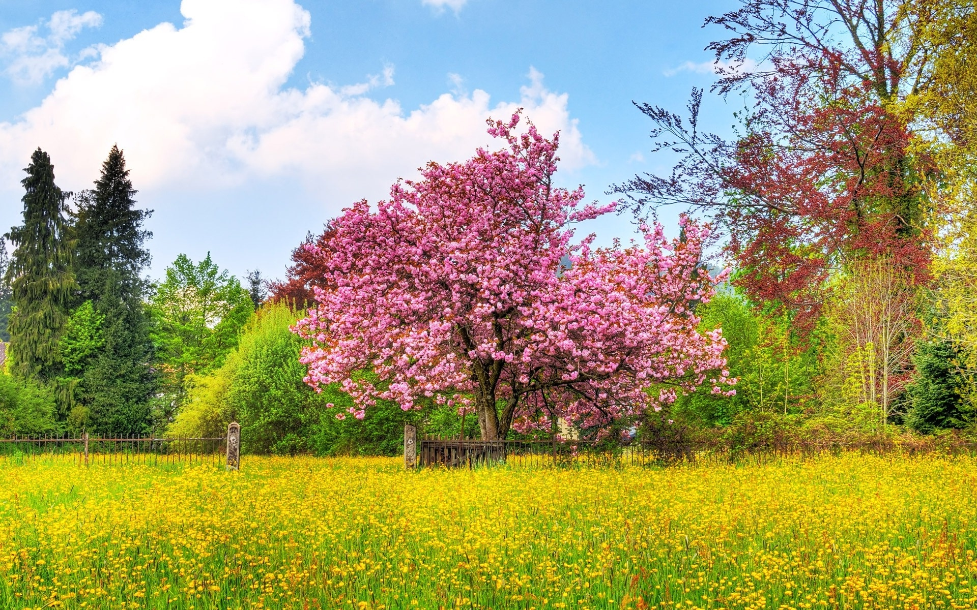 tag spring landscape truly hand picked