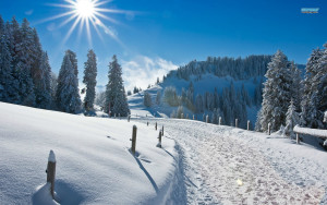 Mid day sun hd winter wallpapers