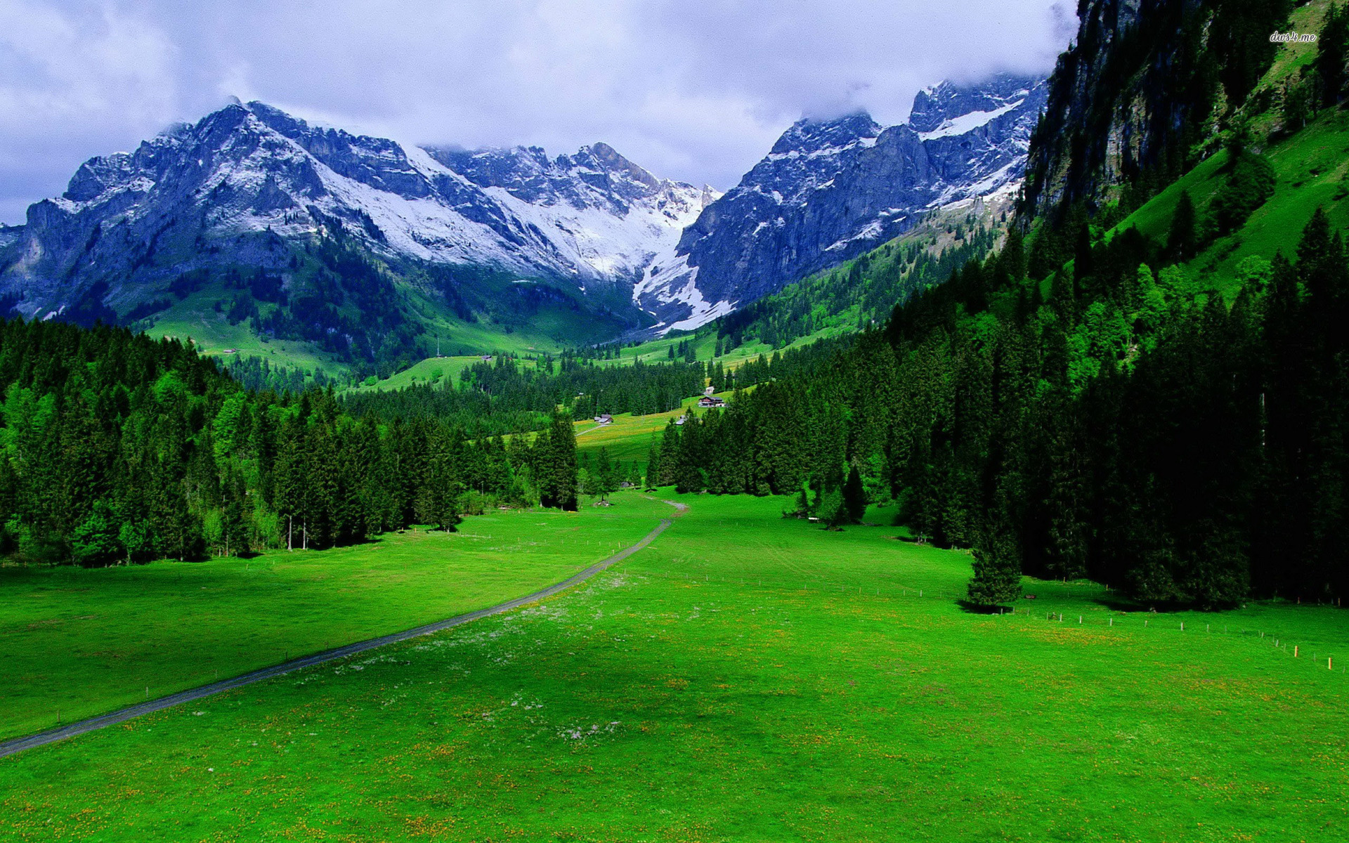 Switzerland Nature Beauty Hd Wallpaper