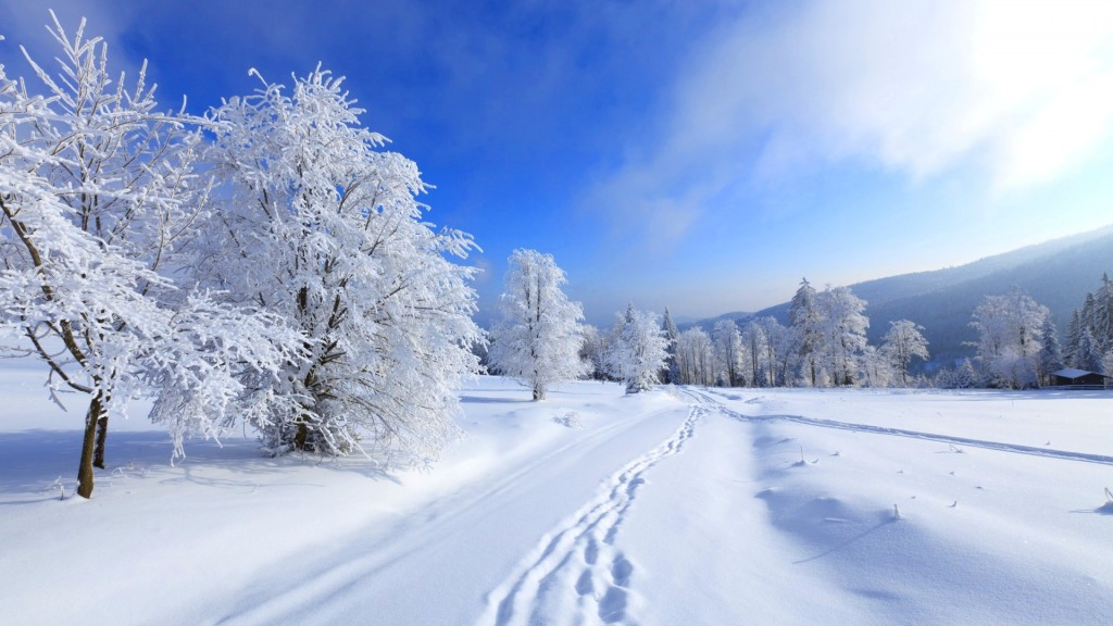 Vehicle trails on snow winter wallpapers