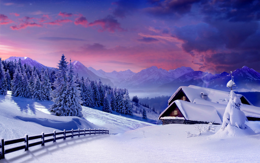 Dense snow and trees cottage winter wallpapers