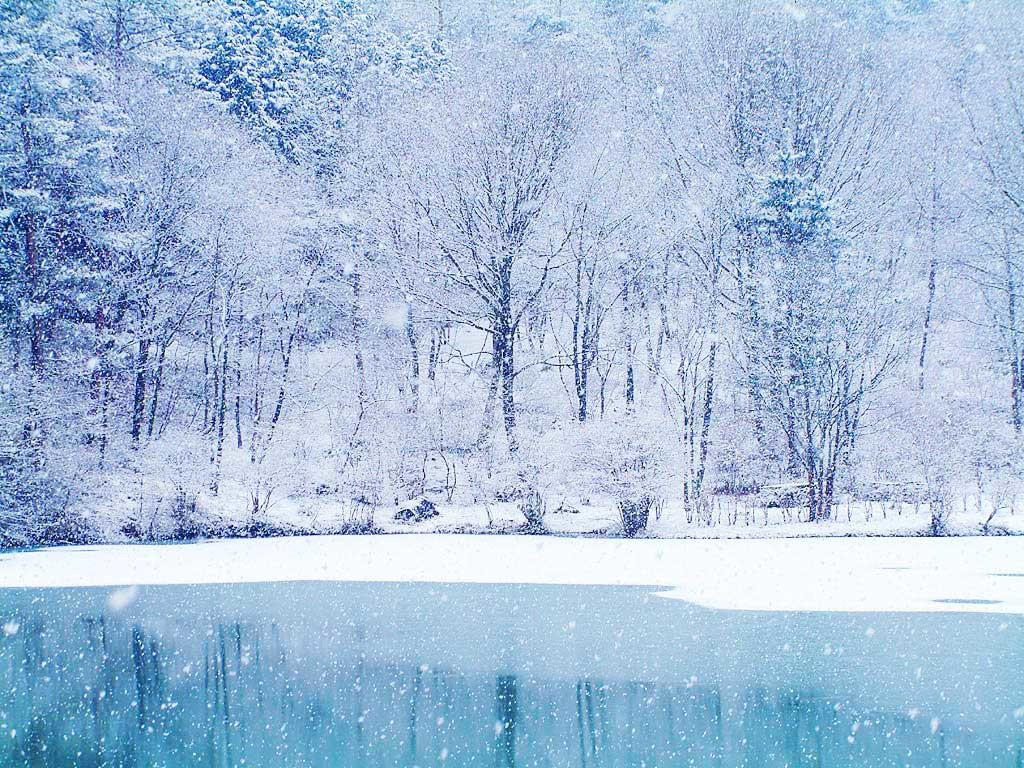 Frozen lake and snow fall winter wallpapers