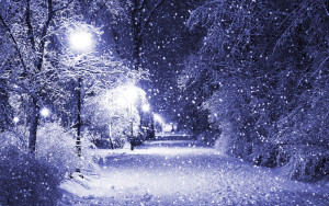 Snowfall during night winter wallpapers