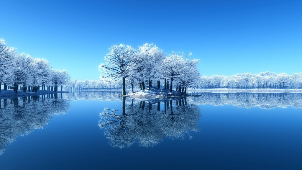 Frozen trees in the lake winter wallpapers