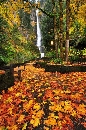 Tag autumn in portland truly hand picked for Holiday craft fairs portland oregon