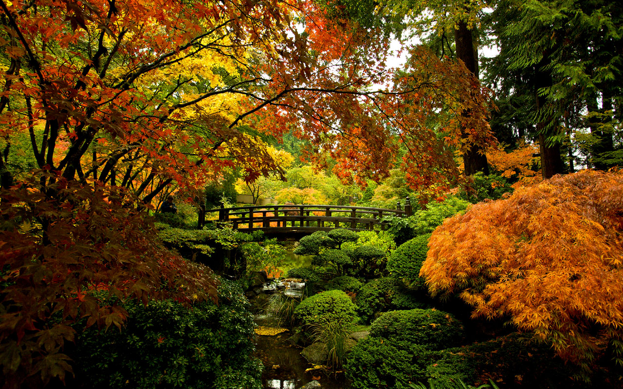 Tag Portland Oregon Japanese garden Truly Hand Picked