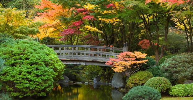 Strolling Pond 11 Portland Oregon Japanese Garden Truly Hand Picked
