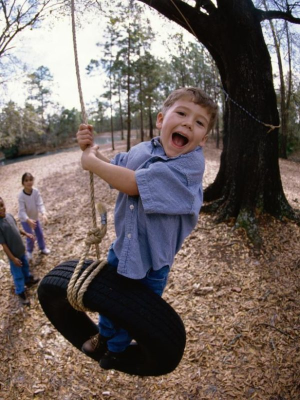 24 Super Easy Tree Hanging Tire Swing with Rope