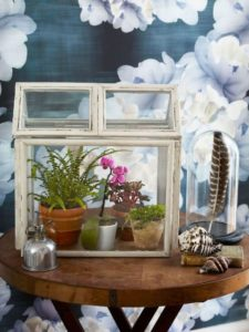 4 BudgetFriendly Mini Picture Frame Terrarium cum Greenhouse