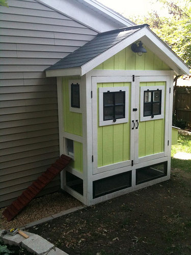 DIY Compact and Cute Chicken Coop Plans – Backyard Chickens