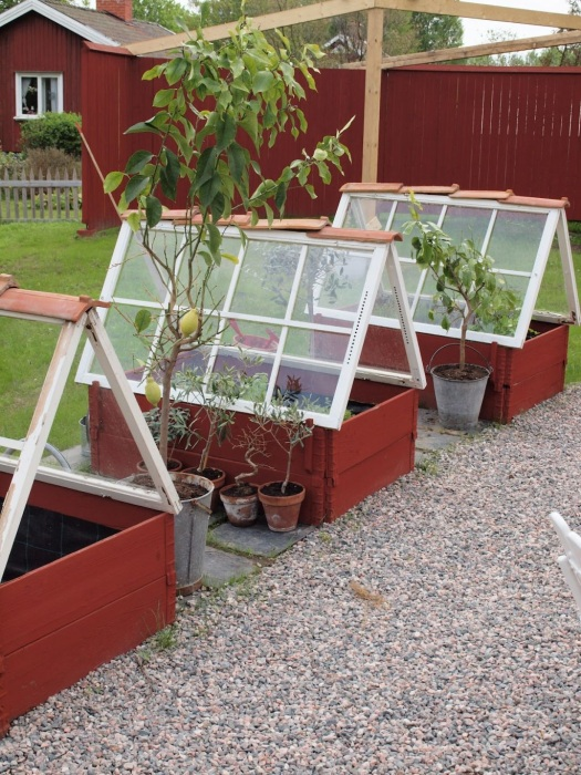 7 DIY Individual Greenhouse Structure for Flower Beds