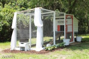 7 Functional Large Chicken Coop with Curtain Dcor