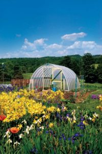 6 Hoop Green House with Transparent Plastic Cover on Metallic Structure