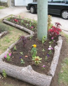 19 Rural Garden Landscaping with Wooden Log Edging for a Natural Raised Bed Domain