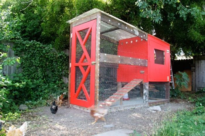 9 Rustic Barn Chicken Coop with Modern Door Style