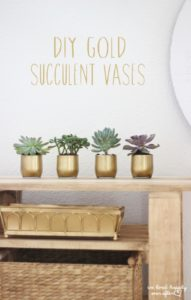 27 Super Stylish Gold Succulent Vases for Small Indoor Plants with Similar Sizes and Patterns fo ...