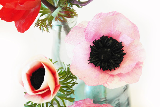 Paper Craft-Crepe Paper Anemones Flowers