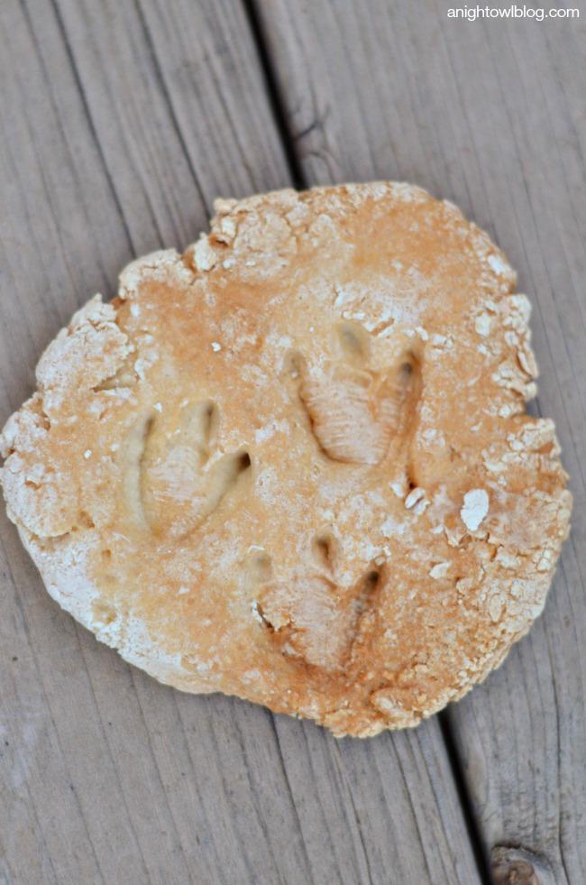 DIY Dinosaur Fossils from Flour Dough
