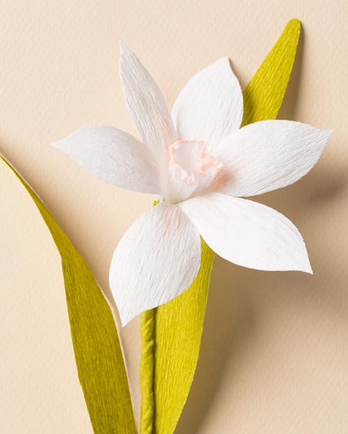 Subtle Paper Flower Narcissus- A Pro Like DIY Craft