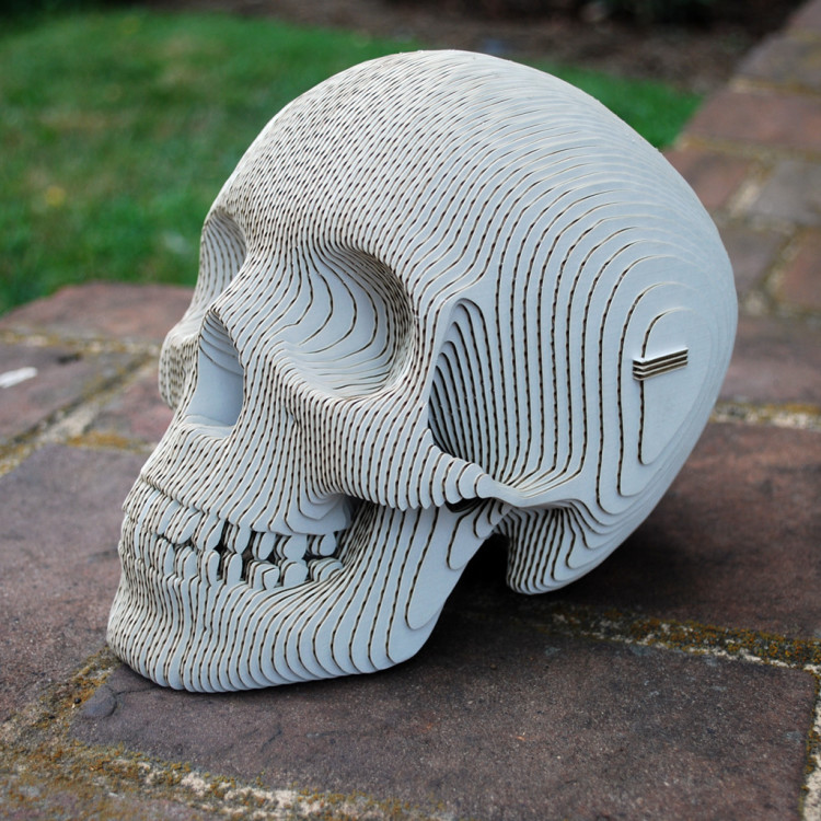 DIY Human Sculpture Skull with Laser Cut Cardboard and White Paint Stroke