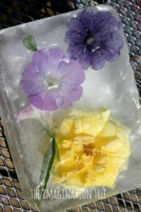 DIY Freezing and Melting Flowers in Ice: Fun Ice Activity for Toddlers