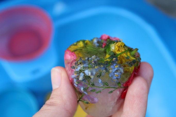 Frozen Flowers Sensory Ice Play A Knowledgeable Spring