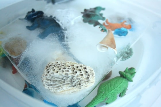Exciting Ice Activity: Excavating Dinosaurs from Melting Ice