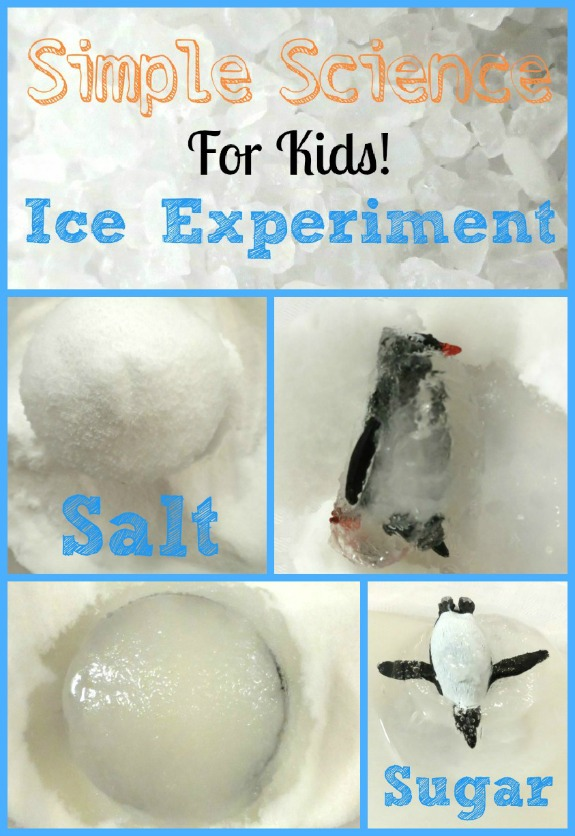 Easy Science Ice Experiment Idea for Kids with Salted or Sugary Frozen Penguin