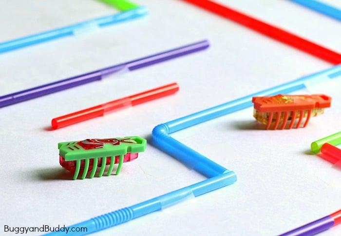 Smart-STEM Challenge for Kids: Hexbug Maze with Straws