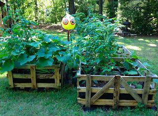 DIY Raised Bed Garden in Pallet Crates: Rustic Gardening