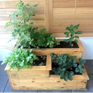 Multi-Level Raised Garden Bed with Pressurized-Lumber Planks