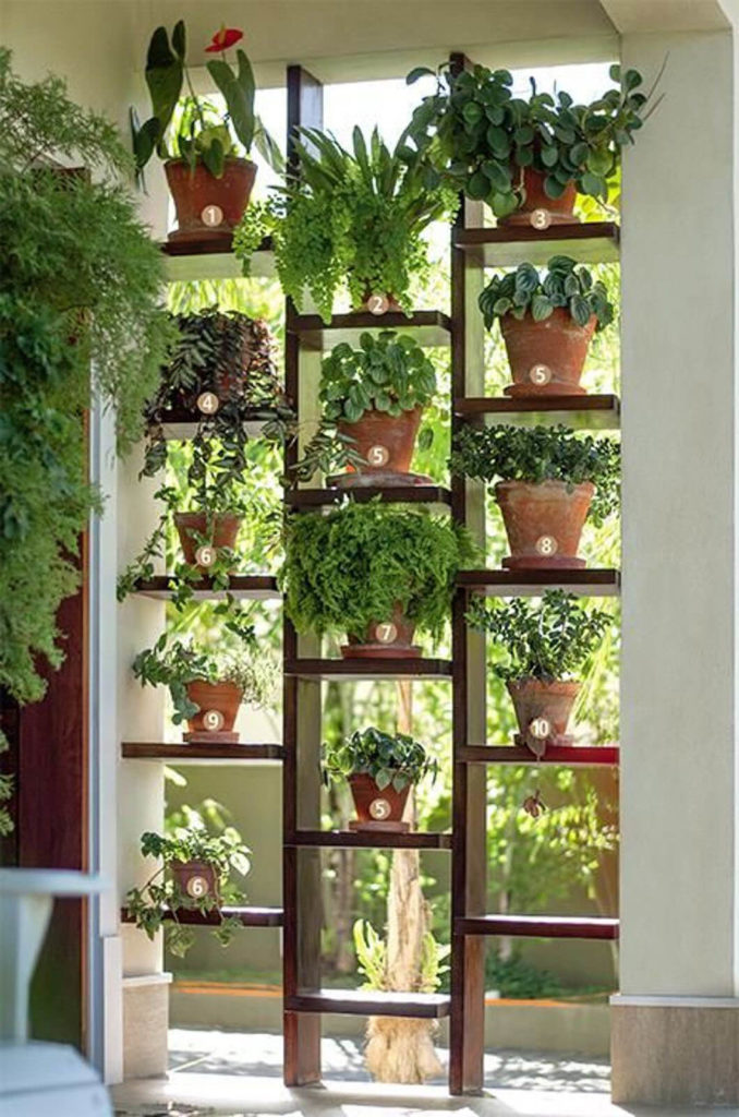 Highly Impactful Ladder-Style Window Herb Gardening For A Mesmerizing Indoor Garden View