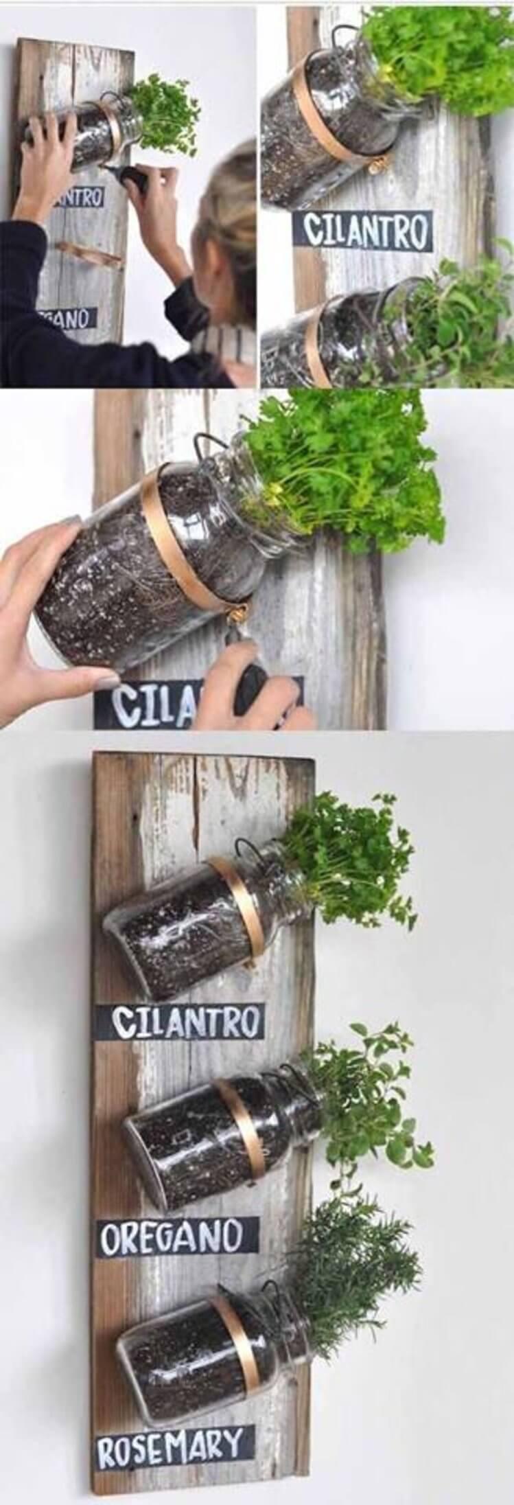DIY Mounted Mason Jar Planter for Herb Gardening on Sturdy Wood Panel Hanging on Metallic Holders