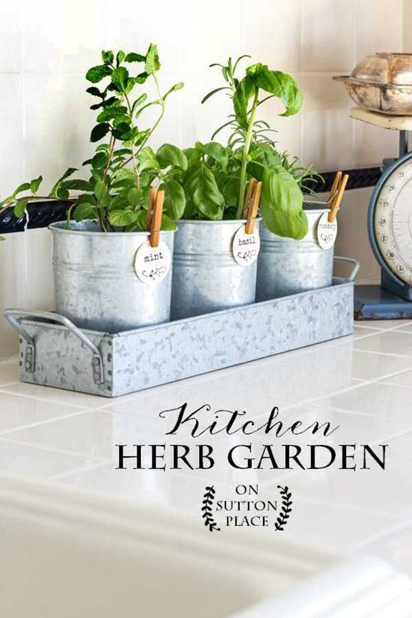 Easy-to-Maintain Pretty Little Palis Planter: DIY Herb Gardening with Metallic Pots