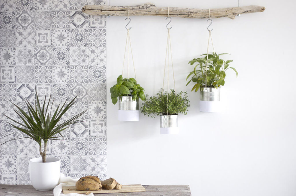 Eco-Friendly Hanging Herb Gardening with Tin Cans: Nature-Inspired Hanging Herb Planting from Dr ...