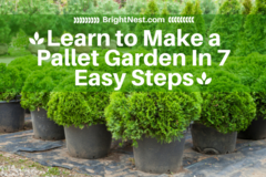 Easy Tutorial of How to Make a Pallet Garden In 7 Easy Steps: A Cheap Garden Project