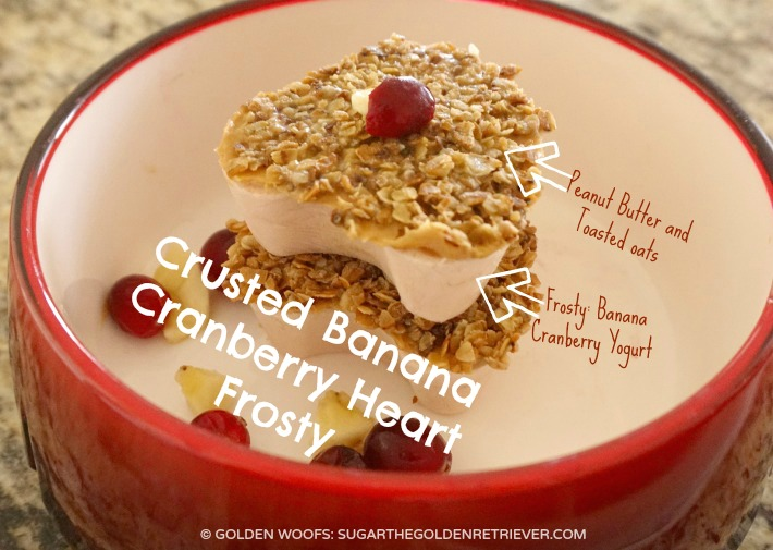 Crusted Heart Frosty Dog Snack Recipe with Banana, Cranberry, and Toasted Oats