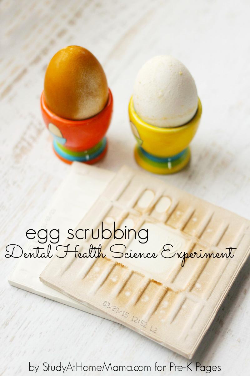 Dental Health Science Teeth Experiment with Hard Boiled Eggs: DIY Health Checkup Trick
