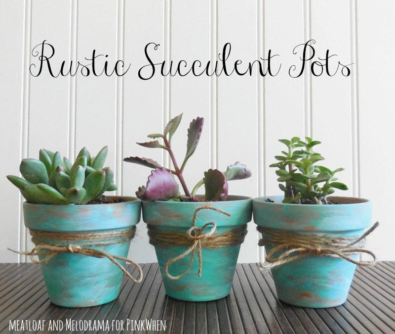 Diy Rustic Succulent Pots Clay Planter