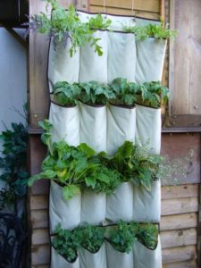 Super Easy and Affordable Vertical Herb Gardening with Fabric Pocket Planters