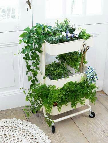 Easily Moveable Herb Planters on Wheel From Old IKEA Bar Cart: DIY Gardening