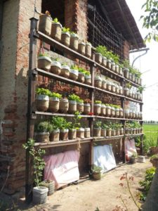 Highly Impressive Vertical Herb Gardening from Old Plastic Bottle: An Eco-Friendly Recycling Project