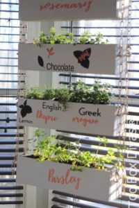 DIY Recycled Herb Gardening with Old Tool Boxes: Tiered Hanging Planters with Name Tags