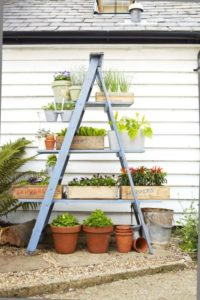 Easy Peasy VErtical Herb Gardening with Upcycled Ladder Using Various Planters Together
