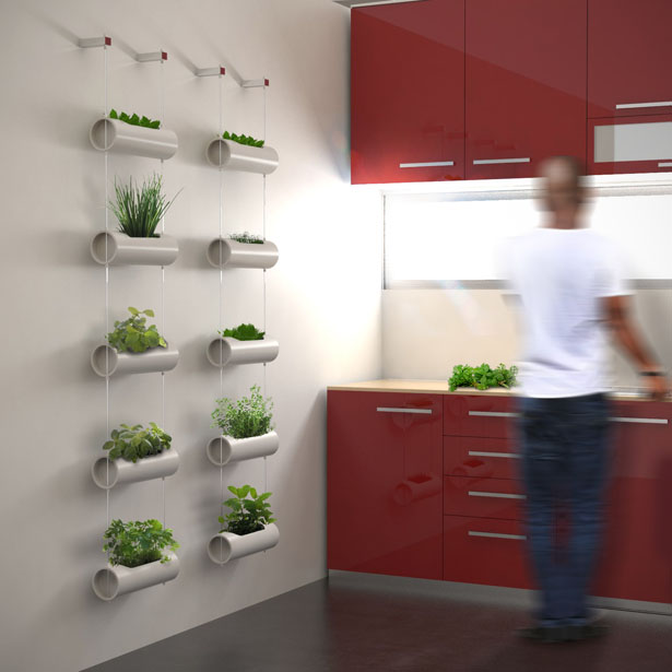 DIY Wall-Hanging Indoor Herb Gardening for Kitchen Area with Minimalistically Designed Pipe Panters