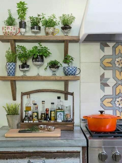 DIY Indoor Herb Gardening Idea in Large Cup Planters On Wooden Shelving Above The Kitchen Counter