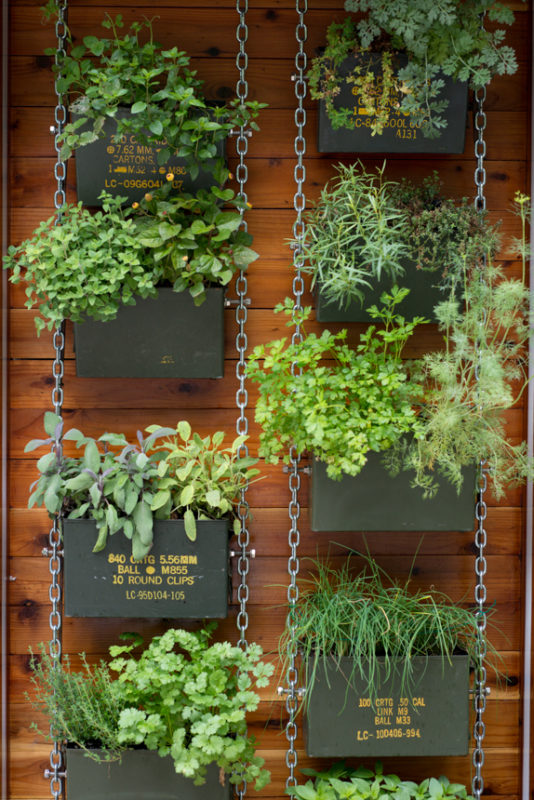 Happy Green Vertical Herb Garden with Recycled Ammo Cans Hanging with Sturdy Metal Chain